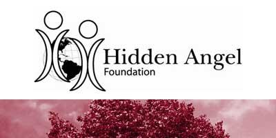 Hidden Angel Foundation Logo